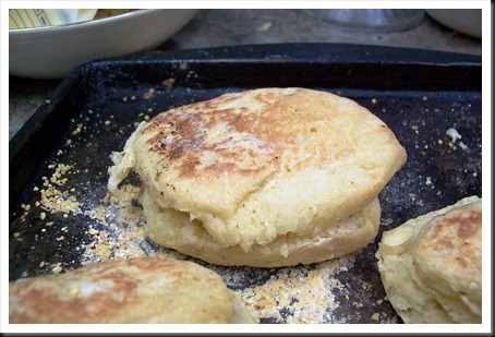 english muffin 1 sept 2011